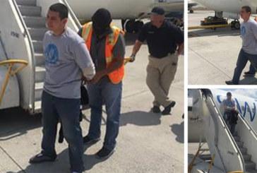 ICE deporta membro de gangue procurado pela Interpol