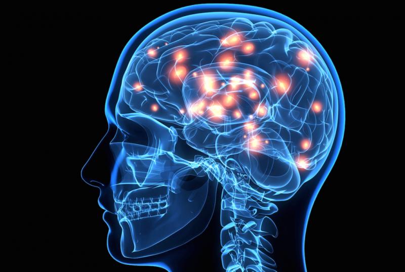 lair Vias de acesso ao cérebro