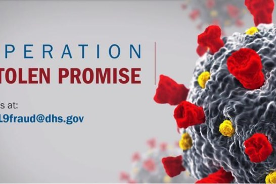ICE lança portal on-line para combater fraudes envolvendo coronavírus