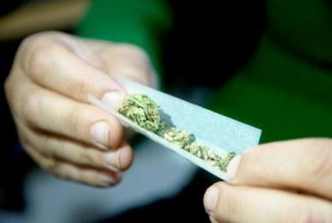 Proposta visa descriminalizar porte de até 450 gramas de maconha em NJ